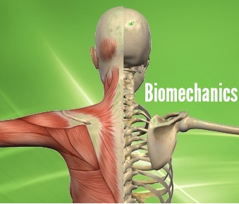 Biomechanics Career in Pakistan Scope Jobs Opportunities