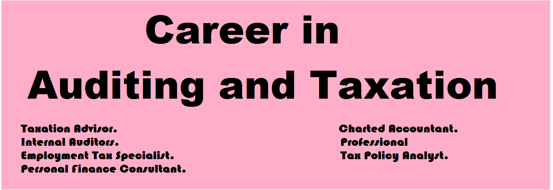 Auditing Career Scope in Pakistan Opportunities Requirements Jobs