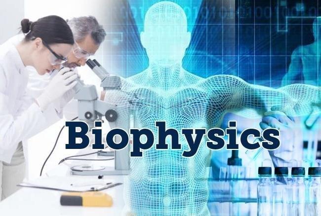 Biophysics Career Scope in Pakistan Education Opportunities Jobs