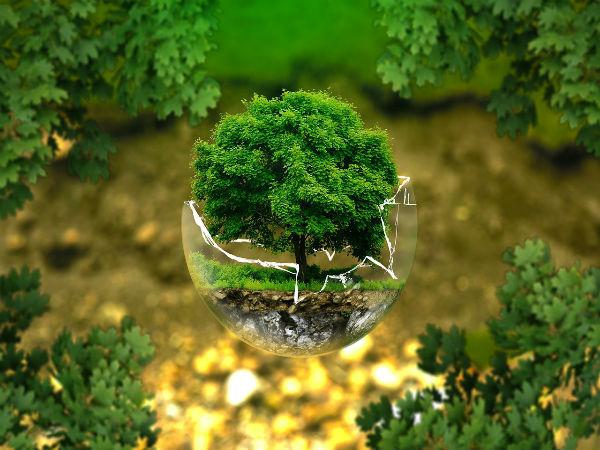 Environmental Engineering Career Opportunities in Pakistan Jobs Scope Salary