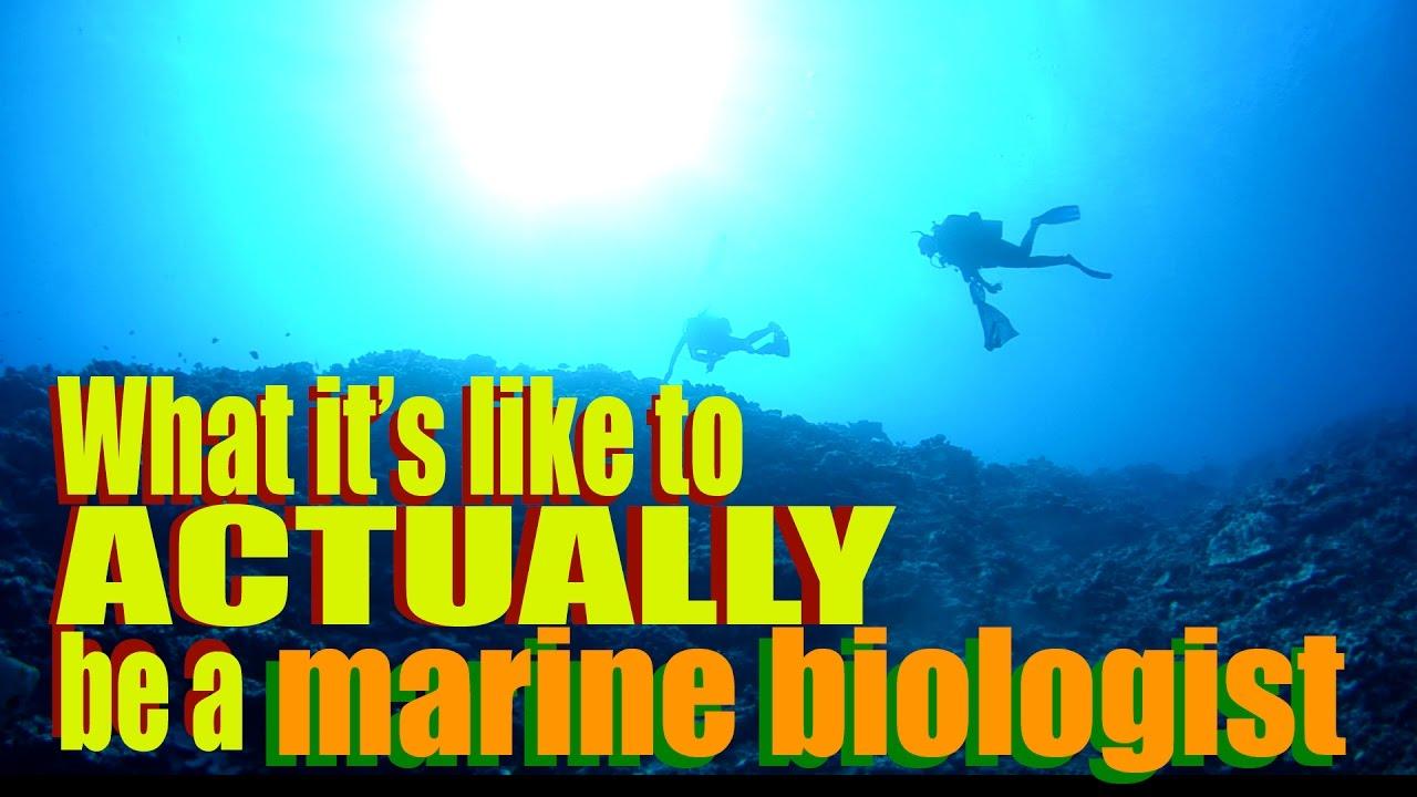 Marine Biology Career Scope in Pakistan Jobs Opportunities