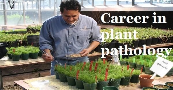 Plant Pathology Career Opportunities in Pakistan Jobs Scope Salary