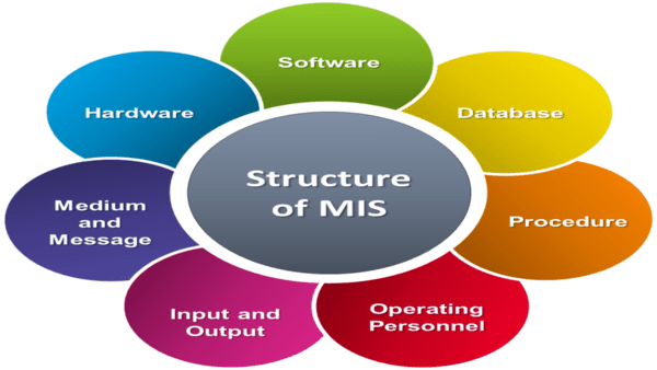 Management Information System MIS Career Opportunities in Pakistan