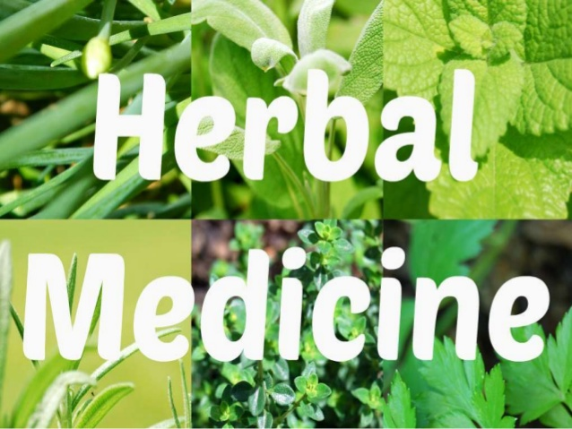 BEMS Herbal Medicine Degree Programs Courses in Pakistan Jobs Career & Scope Degrees