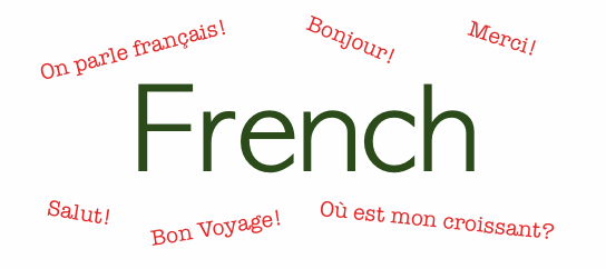 French Language Programs Jobs Career in Pakistan Degrees Subjects Literature Scope Opportunities