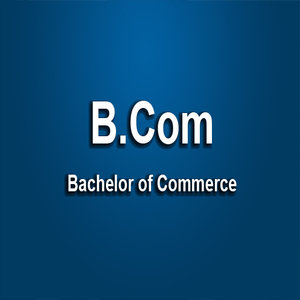 B.Com Degree Career Scope in Pakistan Jobs Opportunities Courses